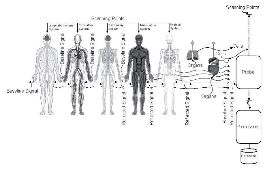 Zeptronic working path - Zeptronic Diagnostics